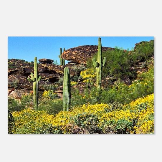 Four Saguaros & Wildflowe Postcards (Package of 8)