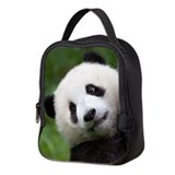 Panda Neoprene Lunch Bag