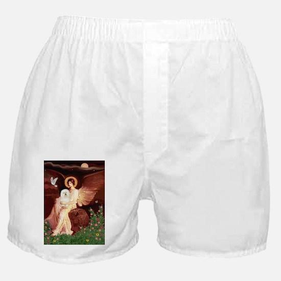 TILE-ANGEL1-Bolognese2.psd Boxer Shorts