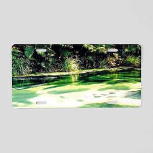 Terawera-Falls-River-183-14 Aluminum License Plate