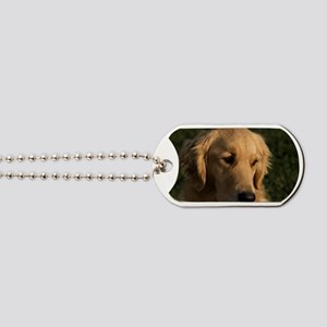 (12) golden retriever head shot Dog Tags