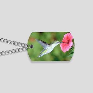 Hummingbird 7 Dog Tags