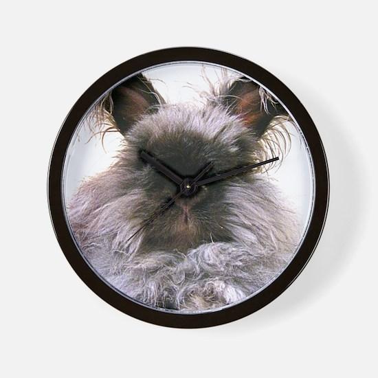 rabbit calendar Wall Clock