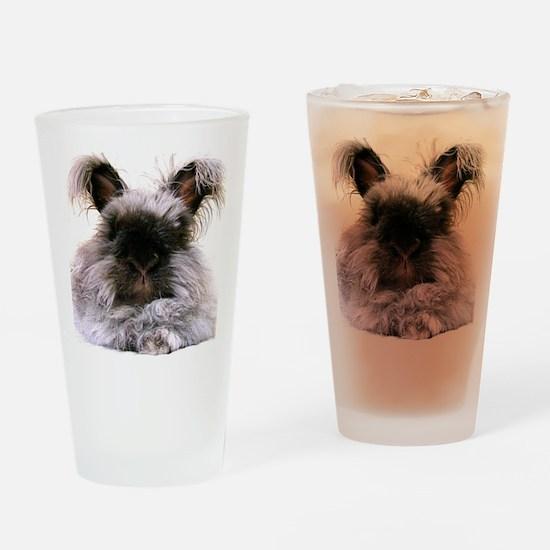 rabbit calendar Drinking Glass