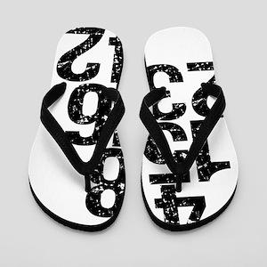 2-lostnumbers Flip Flops