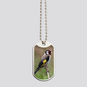 goldfinch3 Dog Tags
