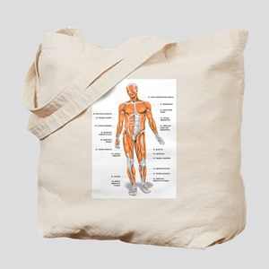Muscles anatomy body Tote Bag