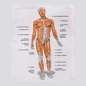 Muscles anatomy body Throw Blanket
