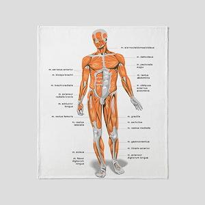Muscles anatomy body Throw Blanket
