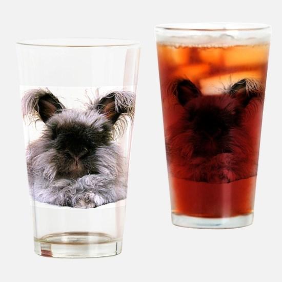 11x17_printfats Drinking Glass