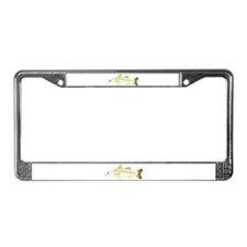 Common Snook License Plate Frame