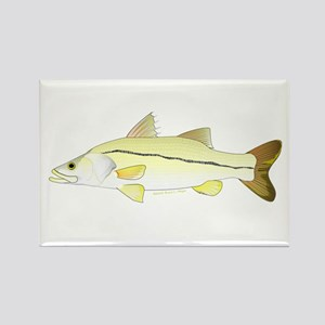 Common Snook Magnets
