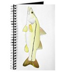 Common Snook Journal