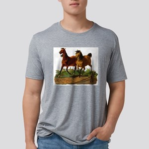 two horses Mens Tri-blend T-Shirt