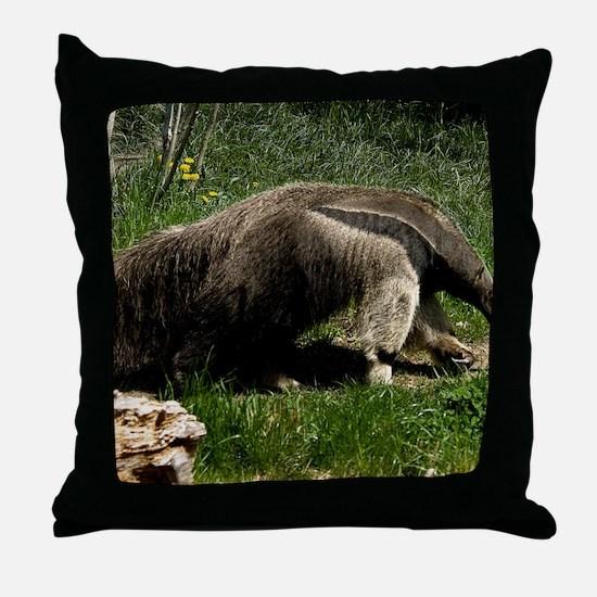 (4) Giant Anteater Throw Pillow