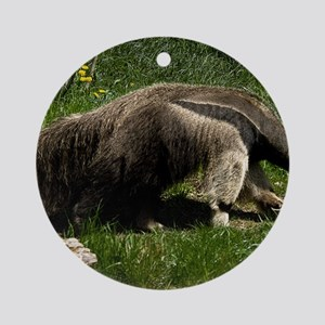 (4) Giant Anteater Round Ornament