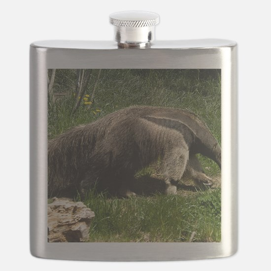 (2) Giant Anteater Flask