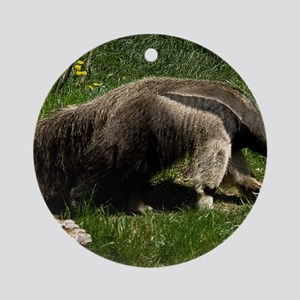(2) Giant Anteater Round Ornament