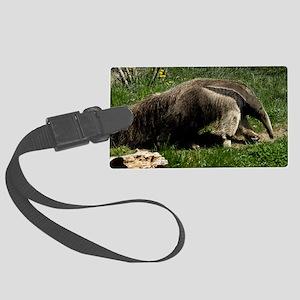 (2) Giant Anteater Large Luggage Tag