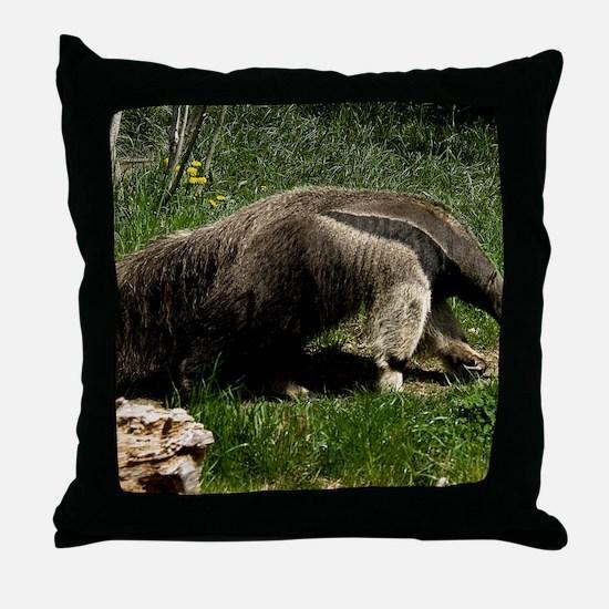 (2) Giant Anteater Throw Pillow