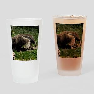 (15) Giant Anteater Drinking Glass
