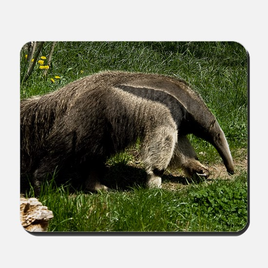 (15) Giant Anteater Mousepad