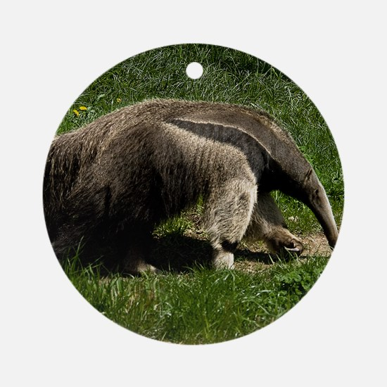(15) Giant Anteater Round Ornament