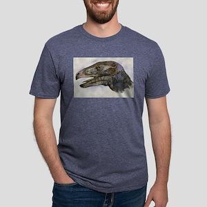dino30 Mens Tri-blend T-Shirt