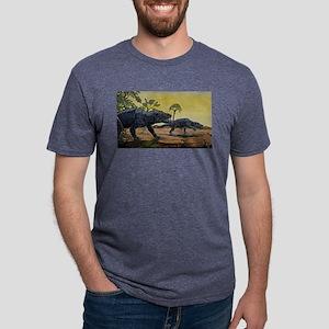 dino13 Mens Tri-blend T-Shirt