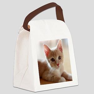 cute kitten Canvas Lunch Bag