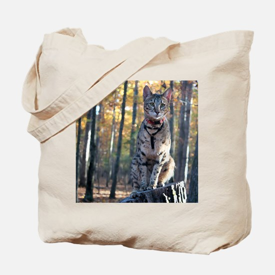 Cat Woods - Tote Bag