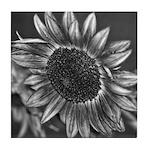 Black & White Sunflower Tile Coaster