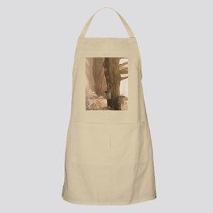 SAP BUCKETS Apron