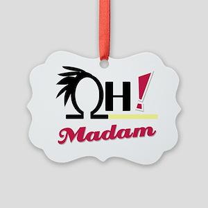 OH_Madam_32610_2000 Picture Ornament