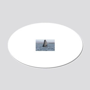 spyhop 20x12 Oval Wall Decal