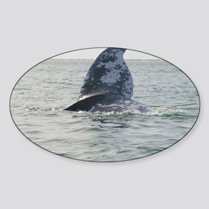 2-IMG_0283 Sticker (Oval)