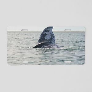 2-IMG_0283 Aluminum License Plate