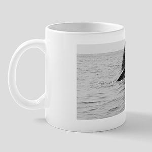2-IMG_0283 - Copy Mug
