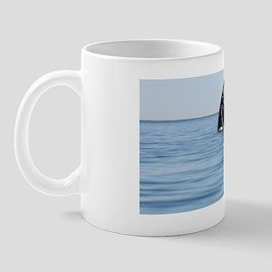 2-IMG_1111 Mug