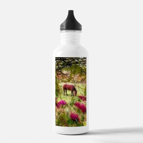 horse in summer Water Bottle