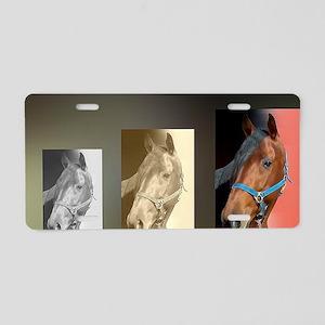 Standardbred Horse Art Port Aluminum License Plate