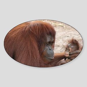 Orangs Sticker (Oval)