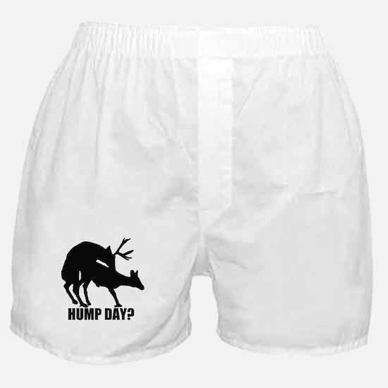 Mule deer hump day Boxer Shorts