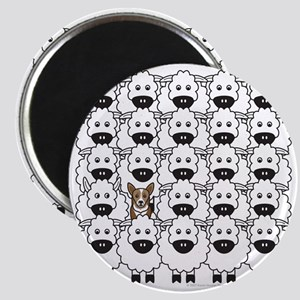 Corgi in the Sheep Magnet