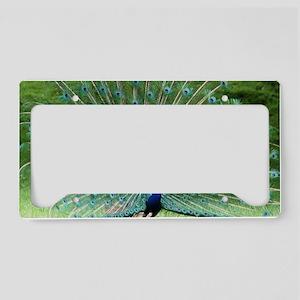 IMG_7416 License Plate Holder
