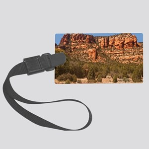 TMtsm Large Luggage Tag