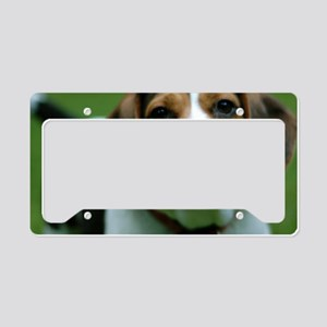 pet-nc3 License Plate Holder