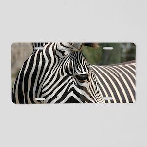 IMG_7912 Aluminum License Plate