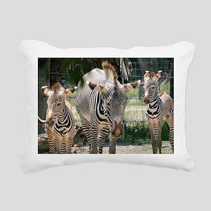 IMG_8290 Rectangular Canvas Pillow
