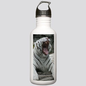 IMG_5181 Stainless Water Bottle 1.0L
